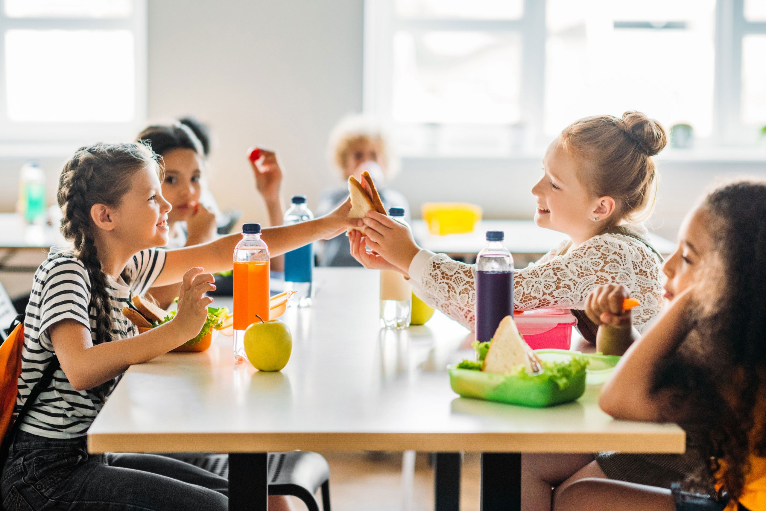 Se crea el I Observatorio Mediterránea de Alergias Alimentarias en Comedores Escolares
