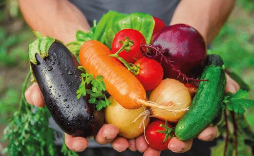 Ni wakame ni quinoa: 5 superalimentos que ya estaban entre nosotros, aunque no suenen exóticos